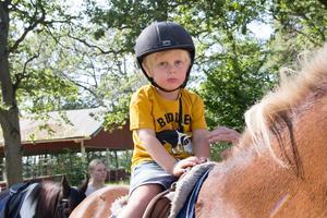 Loke Jonsson var ett av alla barn som passade på att få en ridtur på ponnyhästarna.