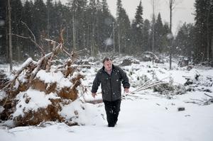 Stormen Dagmar ställde till med förödelse för skogsägaren Tore Strand i Sågmyra. Många träd ligger omkullvräkta över grannens mark och över skoterleder. Tore Strand liksom många andra skogsägare kan inte ta rätt på virket innan skogsstyrelsen besiktat och fått underlag för ersättningskostnader.