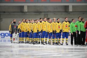 VM flyttas – men Bandypuls livesänder Sveriges matcher ändå. Bild: TT