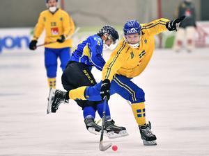 Sverige slog Kazakstan med 22–1 i gruppspelet i VM. Men bandyn drar inte skada av sådana resultat, menar Boris Skrynnik. BILD: Björn Larsson Rosvall/TT