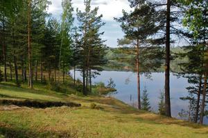 Räddningstjänsten letar efter en sexåring som är försvunnen vid sjön Stråken.