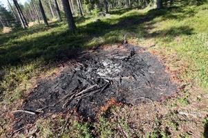 Sådana här fläckar efter eldstäder ligger överallt på makarna Lindgrens mark just nu. Brandlukt hänger kvar i luften fastän det var över en vecka sedan bärplockarna lämnade området.