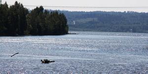 Indalsälvens delta. Ett av Sveriges största deltaområden – i reservatet finns det både sandstränder och intressant alskog.