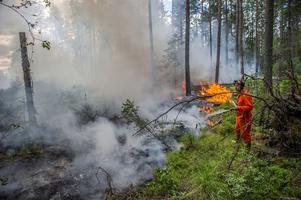 Skogsbranden i Broddbo pågick i flera dygn i juni. Räddningstjänster från flera kommuner hjälpte till i släckningsarbetet. Foto: Niklas Hagman