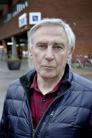 Liberalerna i Sandviken har struntat i bokföringen, enligt revisorn Olov Göransson.