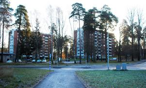 Kommunen har flera planer i korsningen Genetaleden-Saltskogsvägen, men invånarna vill inte se så stora förändringar eftersom de tycker området är grönt och fint. Framför allt den bokskog som finns i närheten, och den vill kommunen freda. Foto: Södertälje kommun