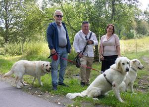 Mats Lundberg, Daniel Ernerot och Amanda Agestav påpekar att föreningen Västerås hundgårdar kan ta över skötseln av stadens hundgårdar. Med fyra nya hundgårdar skulle det bli 1000 hundar per gård. På bilden är Ajax, Simba och Leja.
