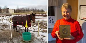 Verksamhetschefen Mia Skäryd fick äran att ta emot plaketten från ridsportförbundet.