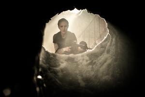 En organism eller en grotta? Gränser upplöses i