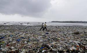 Sju av de tio vanligaste skräpen i strandnära miljöer och hav är plaster. EU kan nu gå i främsta ledet och visa på alternativa vägar, skriver Fredrick Federley. Rajanish Kakade, TT.
