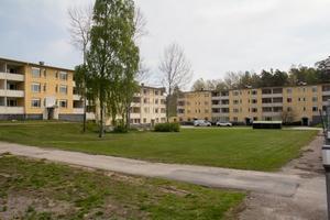Hyreshusen på Tallvägen ligger i det område där medianinkomsten är lägst inte bara i Söderhamns kommun utan i hela Hälsingland.