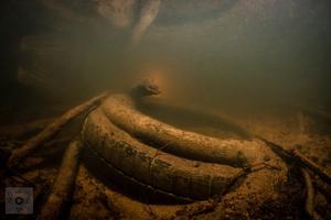 På ytan kan vattendraget se till synes vackert och oberört ut. Under ytan gömmer sig dock allsköns skräp, som här dokumenteras av Thomas Örn Karlssons fotografkollega Fredrik Blomqwist.