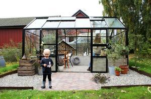 August älskar att vara i växthuset. Nästa år ska hela familjen plantera ätbara saker tillsammans.