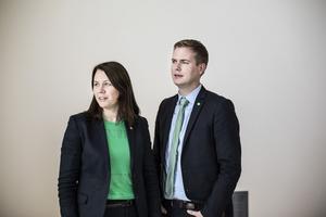 Gustav Fridolin borde tillsammans med Åsa Romson tvingas lämna regeringen. Men han klarar sig kvar tack vare uppdraget som språkrör vilket drabbar regeringens utbildningspolitik.