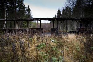 6. Under 10-talet ur utan verksamhet har skjutbanan i Iggesund växt igen.