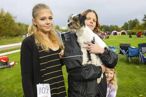 Isabelle Lindberg, Monika Dahlström (ursprungligen från Lillhärdal) och Nellie Dahlström for från Delsbo till utställningen i Sveg med Magnum, en terriervalp. Utställningen var öppen även för valpar.
