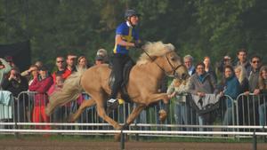 Thorvaldur Arnason tog VM-silver med hästen Thyrnir från Knubbo.