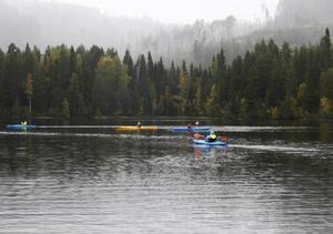SCA kommer att satsa vidare på sportfisket i Lögdö vildmark.