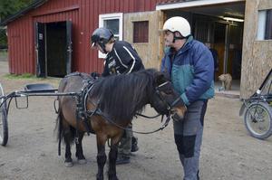 Eleverna hjälps åt. Här håller Lars Ling i Trolle medan Johan Persson spänner för.