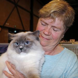 Ragdoll heter rasen och Toulouse heter katten som bor hemma hos matte Anne-Marie Pettersson i Mjölby.