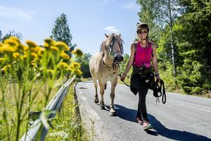 I somras tog Suzanna Holmqvist och fjordingen Krumelur, sig från Höör i Skåne till Jokkmokk i Lappland.