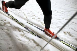 Det skiljer flera tusen kronor mellan de billigaste och dyraste vallningsfria skidorna. En av de billigare varianterna visar sig vara bäst. Skidorna testades i Torsby Ski Tunnel.Foto: Linn Malmen