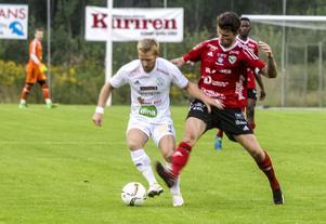 Niklas Holm.