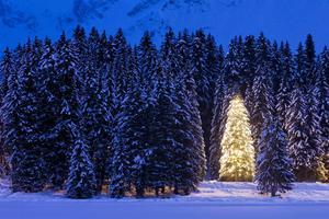I julnattens mystik står upplösningen av dramat.