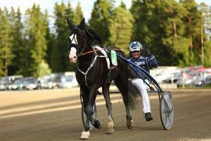 En av världens bästa kallblod, Tekno Odin, hade stor uppvisning i Sven O Perssons Minne och vann på väldigt fina tiden 1.22,1.