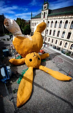 2011. Den gula kaninen.