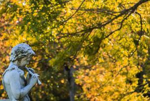 En staty en solig höstdag utanför Tidö slott