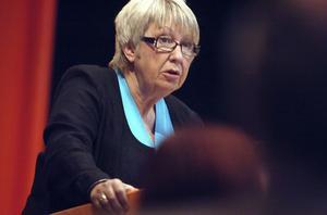 Landstingsrådet Ann-Margret Knapp (S) medger att upphandlingar är komplicerade.