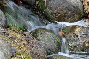 Denna bild av det lilla dammvattenfallet tog jag vid besök vid groddammen på Djäkneberget.