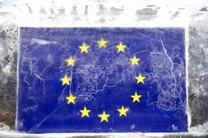 I maj är det Europaparlamentsval. Foto: Henrik Montgomery/TT