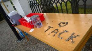 Några pokémonjägare visade sin tacksamhet för kyrkans initiativ.