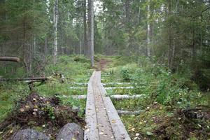 Spång på Lollan, en av de röda banorna, och uppkallad efter cykel- och skidjunioren Louise Lindström.