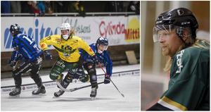 Robin Ehn såg fram mot sin tredje säsong som hockeyspelare, men så blev det inte för 28-åringen som även spelat bandy för Ljusdal, Bollnäs och Edsbyn