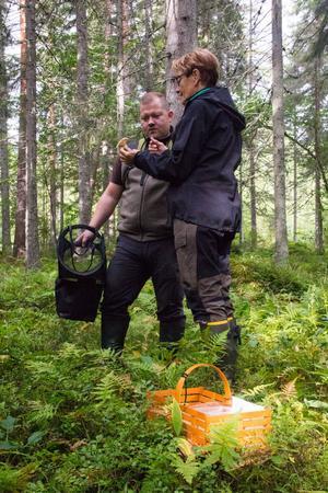 Anders Ingvarsson älskar att plocka svamp, men har hållit sig till kantareller. Nu får han lära sig betydligt fler arter