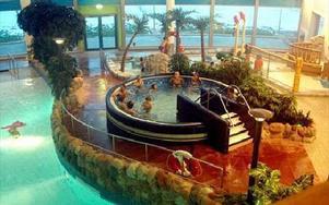 Trots fler besökare än planerat, så visar Aqua Nova och Maserhallen på förlustsiffror.