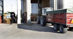 I år köar åter traktorerna med spannmål vid silon i Stugsund.
