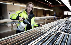 Genom att spruta lite vatten på bergproverna i borrkärnearkivet kommer färgerna fram bättre och Louise Sjögren kan enklare avgöra vilka kärnstavar som ska skickas på mer noggrann analys.