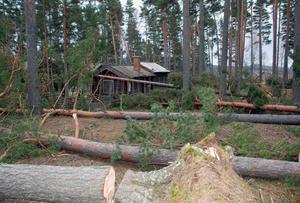 Så här såg det ut vid Åhls gammelgård i går. I bakgrunden den gamla bastubyggnaden som fick en bit av taket skadat.