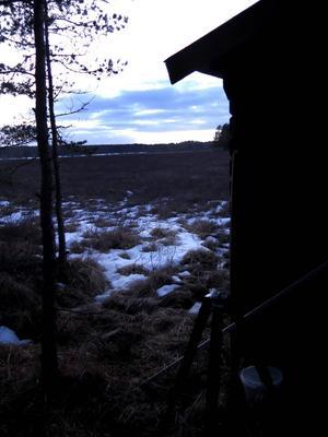 Lång dag i gömslet. För att inte störa örnarna måste man ta sig hit innan det ljusnar och stanna kvar tills mörkret faller.
