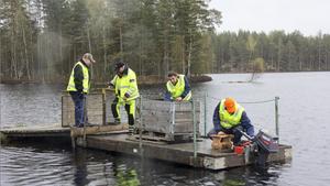 Ett halvt ton fisk har fördelats i lilla och stora Abborrtjärn, det mesta i den större sjön.