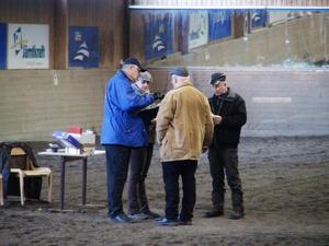 Det är främst exteriören som domarna bedömde under helgens hingstpremiering. Men även hästen temperament granskades.