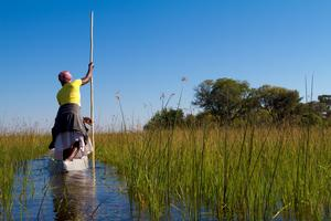 Okavangodeltat i Botswana har fått världsarvsstatus.