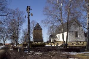 Är inte av det rätta virket. Dåliga träd som lätt kan knäckas och falla ska tas ned på kyrkogårdarna runtom i kommunen.