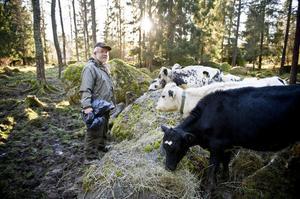 Per Önnerstam i Vängsbo tar väl hand om djuren. Det är också svårt att ta farväl om ett djur måste slaktas. Ett djur är en personlighet. Jag brukar tänka igenom det som har varit, innan ett djur skickas i väg, säger Per.
