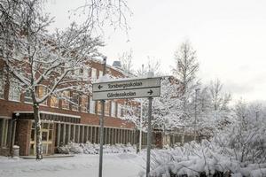 Två program avvecklas på Torsbergsgymnasiet från och med i höst – industritekniska och naturvetenskapsprogrammet .