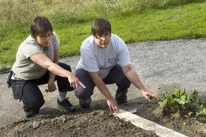 Systrarna Jenny och Caisa Morin gillar trädgårdsarbete.